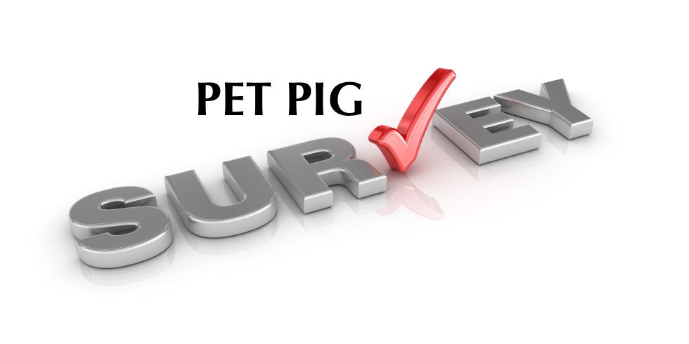 Nappa Surveys on Veterinary Hospital Surveys